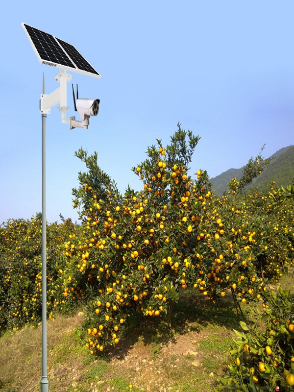 Wireless solar monitoring system for orchard